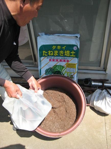 熱海温泉納豆の原料として