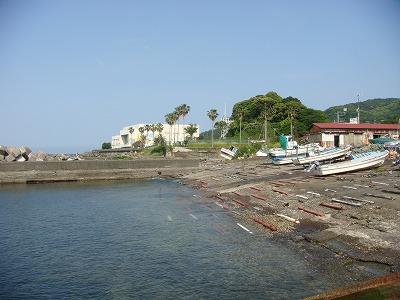 マリーナから南熱海マリンホールを写す