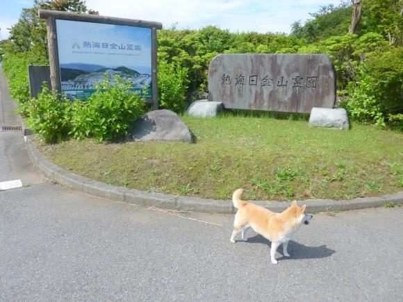 日金山霊園入口