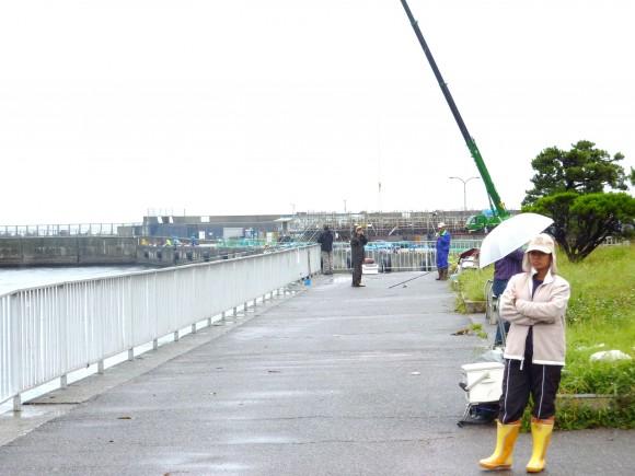 重油の帯に戸惑う釣り客