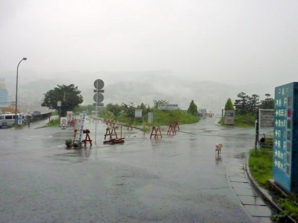 豪雨に洗われた芝生公園駐車場付近