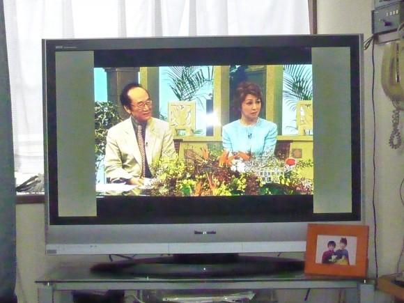 TV神奈川出演番組