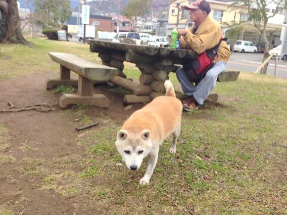 千歳川公園